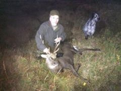 A sika stag that i shot in ireland this year